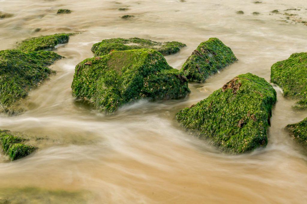 Zijde-achtig water,Scheveningen Noorderstrand, Den Haag, Zuid-Holland (2015)