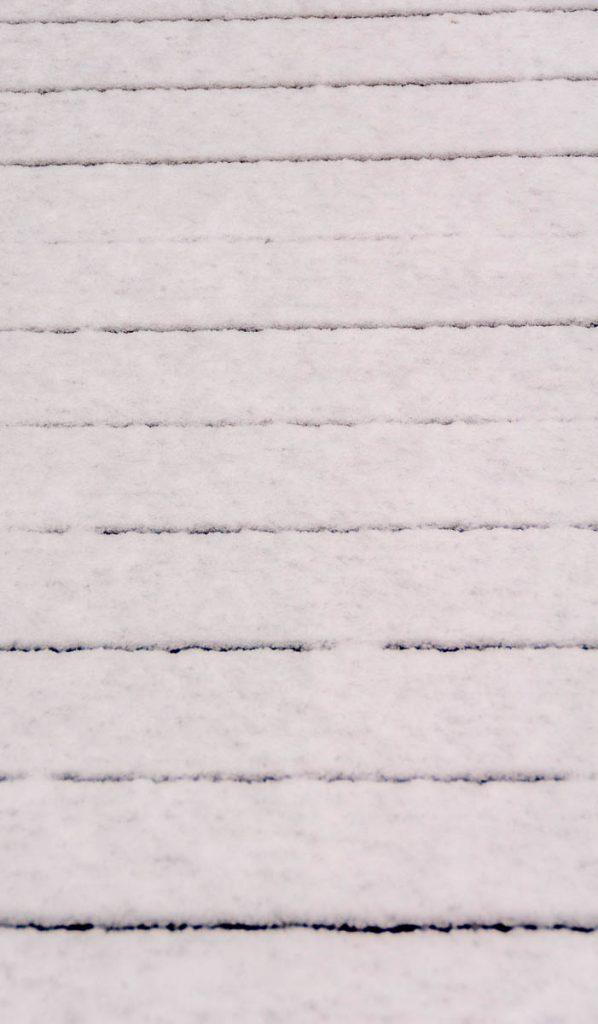 Sneeuw,Lelystad, Flevoland (2016)